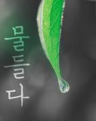 베스트 오브 베스트 1위 작품 표지